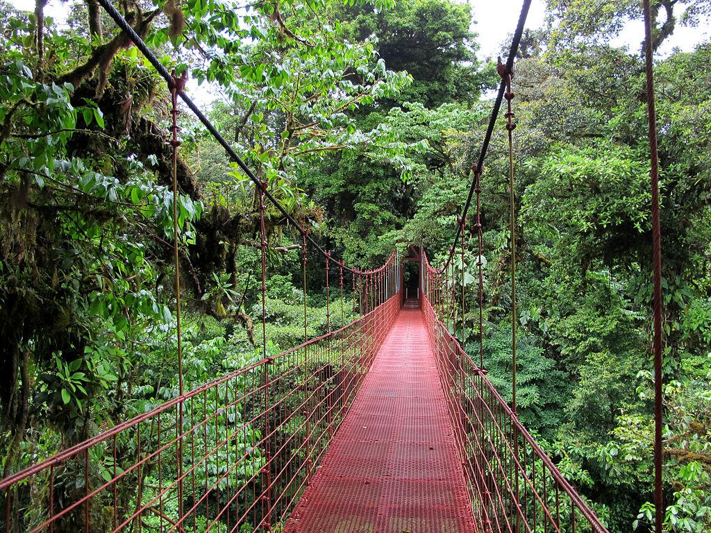Pourquoi visiter la réserve de Monteverde lors d'un séjour au Costa Rica ?